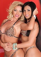 Sweet trannies Carla Novaes and Bruna Butterfly love each other's company!